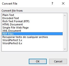 Convert File dialog in Word