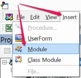 How to insert a module in the Visual Basic Editor
