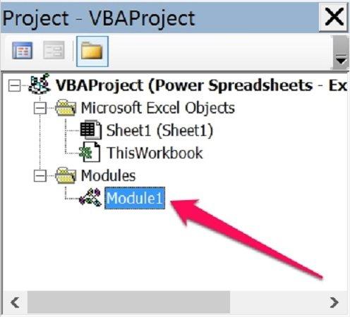 Module1 in Project Window