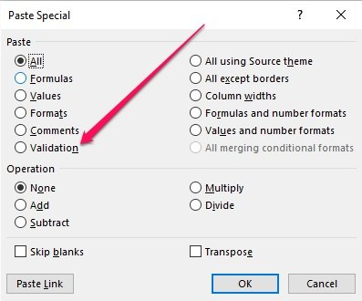 Paste Validation option within Paste Special dialog